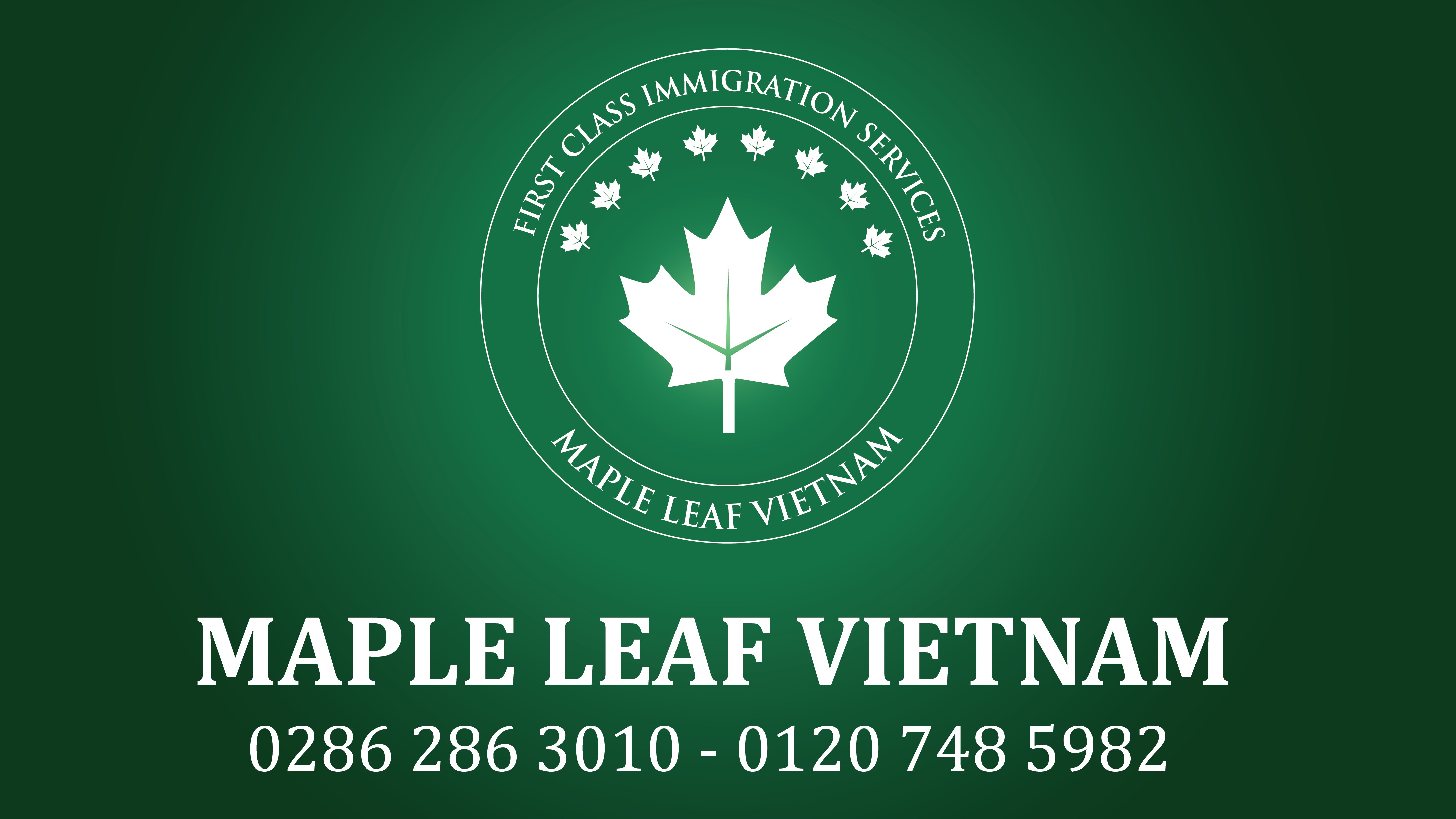 diem-lai-hanh-trinh-6-thang-dau-nam-cung-maple-leaf-vietnam
