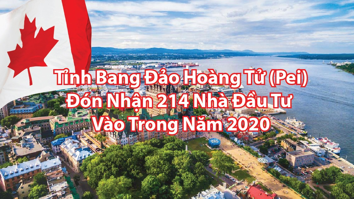 tinh-bang-dao-hoang-tu-pei-don-nhan-214-nha-dau-tu-vao-trong-nam-2020